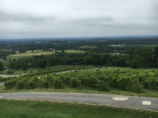 Bluemont, VA: photo0.jpg