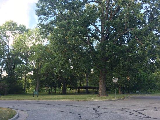 Midland, MI: Emerson Park