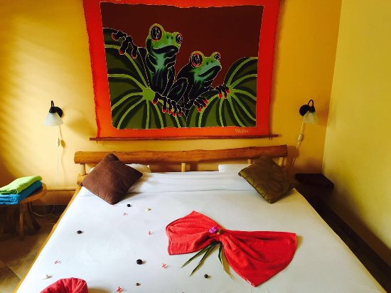 Samara Palm Lodge: Traumhaft schöne Lodge mit viel Liebe zum Detail! Strand ist Flussläufig erreichbar:)