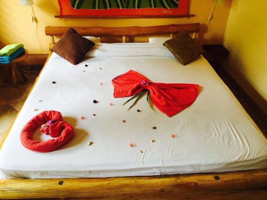 Samara Palm Lodge 이미지