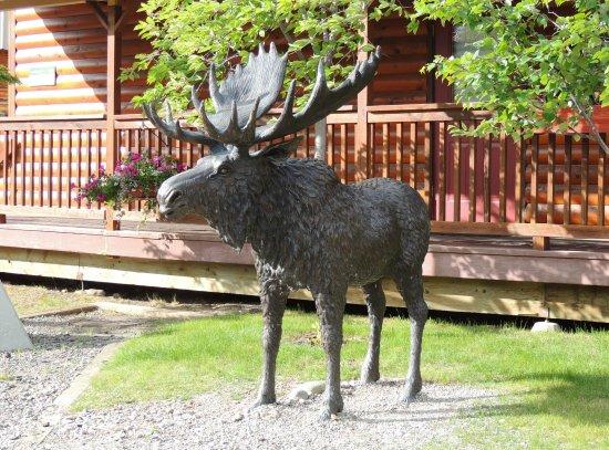 Denali Princess Wilderness Lodge 사진
