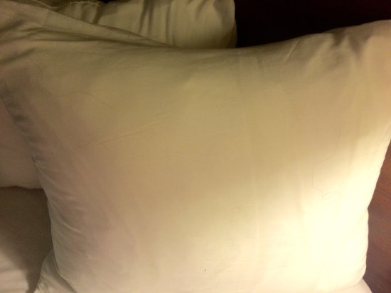 Quality Inn & Suites : photo2.jpg