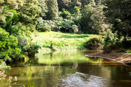 River Retreat Bed & Breakfast: Waitangi River tranquility