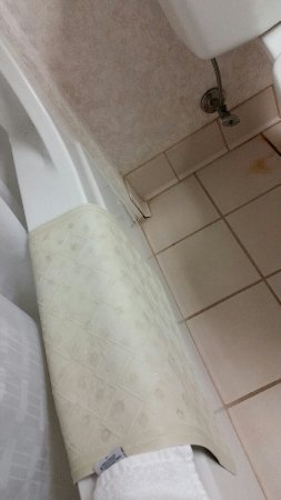 Comfort Inn & Suites: Dingy bath mat and brown stain on floor next to commode.