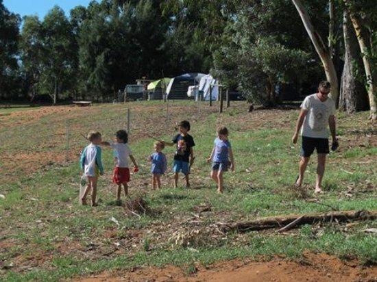 Gingin, Australie : exploring the farm