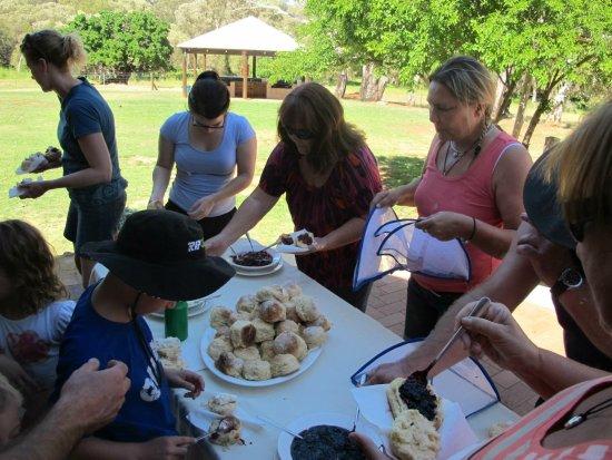 Gingin, Australie : Sunday scones