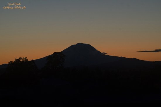 Goldendale, WA: Mt. Adams at sunset