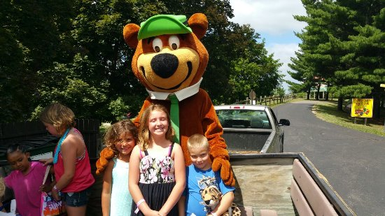 Yogi Bear's Jellystone Park Camp-Resort: 20160705_111506_large.jpg