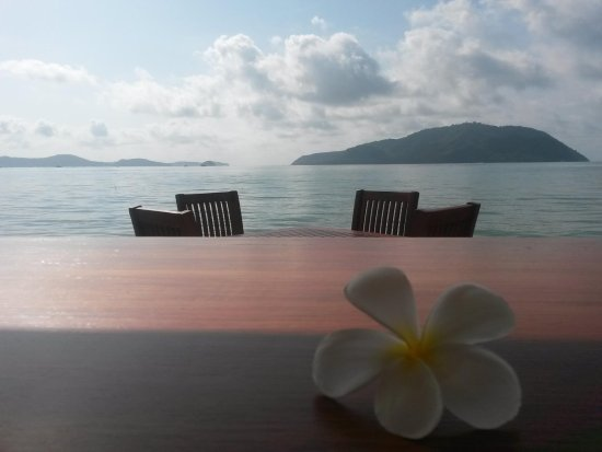 Serenity Resort & Residences Phuket: Morning view from restaurant