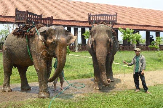 Ban Xieng Lom, Laos: hose down