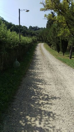 Galluzzo, Italia: IMAG2833_large.jpg