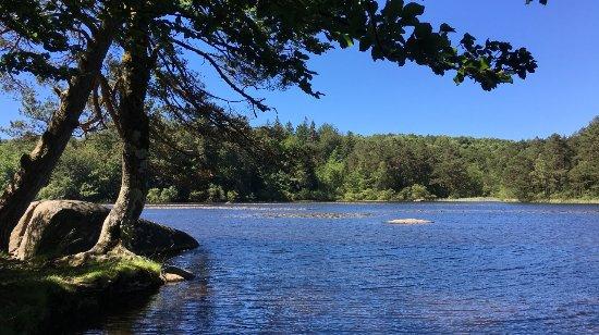 Lacrouzette, ฝรั่งเศส: Lac du Merle