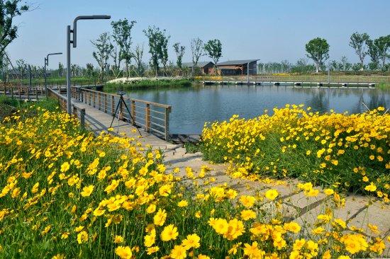 Fairmont Yangcheng Lake  Bewertungen  Fotos  U0026 Preisvergleich  Kunshan  China