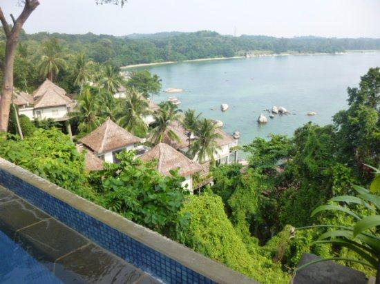 Banyan Tree Bintan: インフィ二ティープールからの眺め