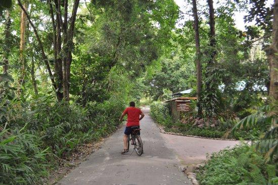 Wild Mahseer: Cycling
