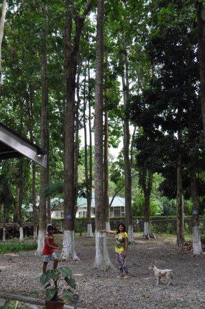 Wild Mahseer: Open Area of Dining Hall