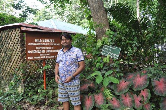 Balipara, อินเดีย: Garden