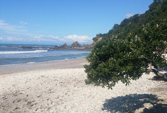 Ohope, Nueva Zelanda: 20160327_153527-1_large.jpg