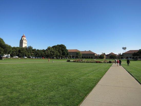 Πάλο Άλτο, Καλιφόρνια: 校園一景