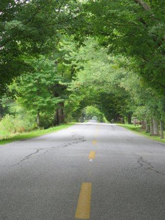 Saint-Armand, Canada : La route pour se rendre au Domaine du RIdge, de toute beauté