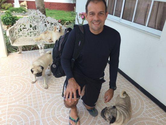Hostal Mar y Mar: Entrada e os famosos cachorros. Muito dóceis.