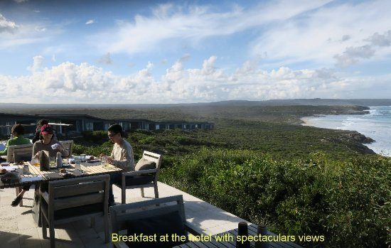 Southern Ocean Lodge: Breakfast at the hotel with spectacular views