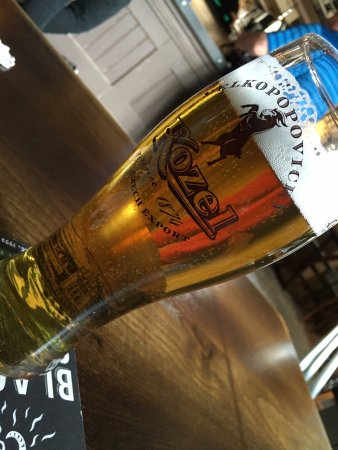 Pontefract, UK: Kozel at The Tap