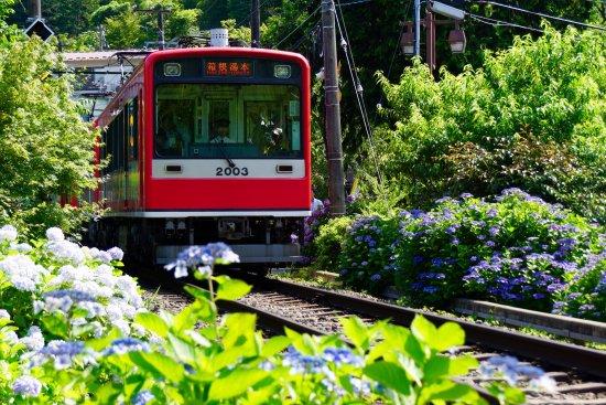 箱根登山电车(箱根登山铁道)