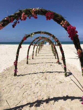Pinewood Beach Resort & Spa: my bridal archway