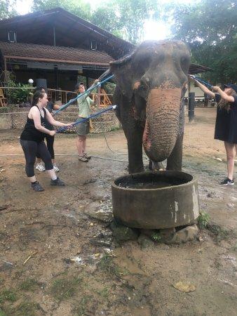 Tha Yang, Thailand: photo4.jpg