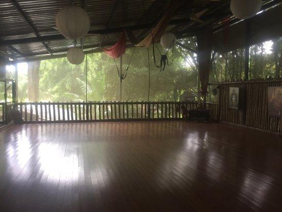 Danyasa Eco-Retreat - Bamboo Yoga Play Studio: photo0.jpg