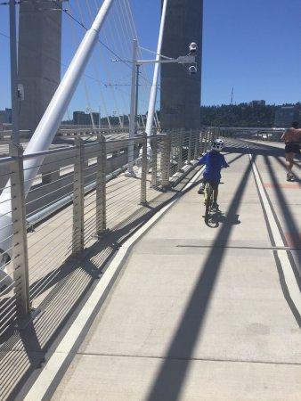 Waterfront Bicycles: photo0.jpg