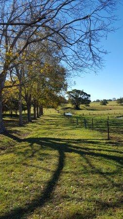 Ewingsdale, Australia: Enjoy a lovely walk around the farm
