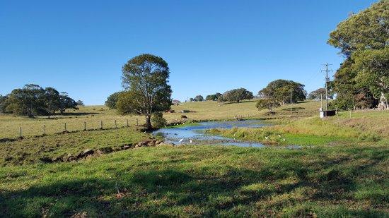 Ewingsdale, Australia: Beautiful scenery