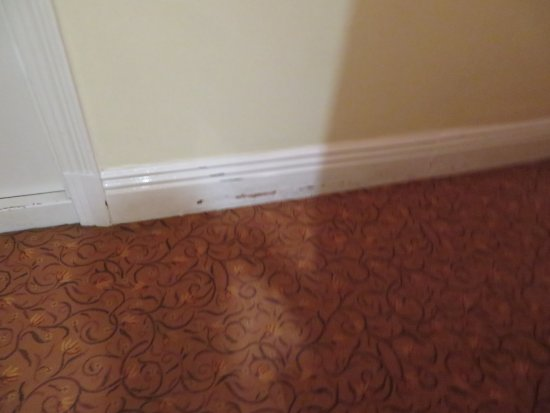 Sefton Hotel: Typical skirting board scuffing.