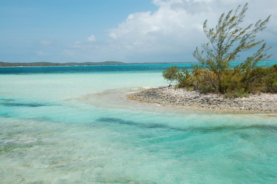 Shannas Cove Resort: crystal clear waters in the Bahamas