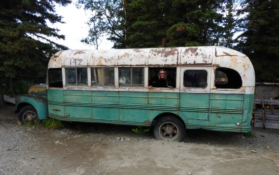 Healy, AK: Dogs running around out front, and an old tour bus to check out