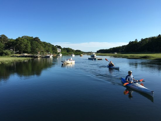 West Harwich, MA: Guided Kayaking adventures available