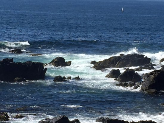 Foto de Cape Arundel Inn & Resort