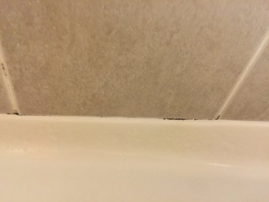 Garden City, GA: Mold in bathroom & broken tub stopper
