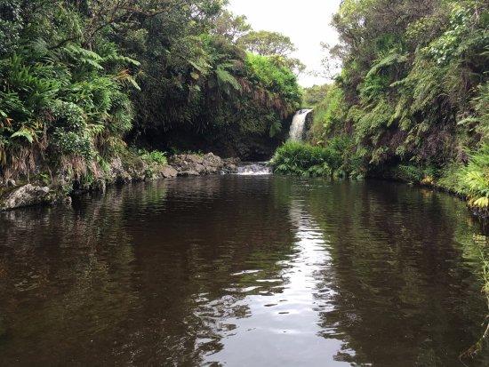 Kukuihaele, Hawái: Atop Hi'ilawe Falls, a spiritual, inspiring experience.