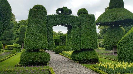 Kendal, UK: Stunnong topiary !