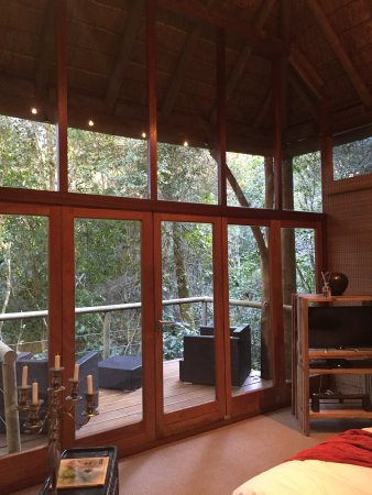 Trogon House and Forest Spa: photo5.jpg