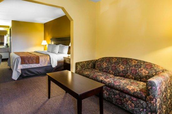 Comfort Inn - Forsyth: Guest Room