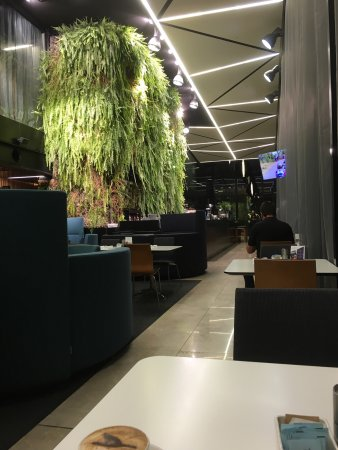 Novotel Auckland Airport: photo0.jpg