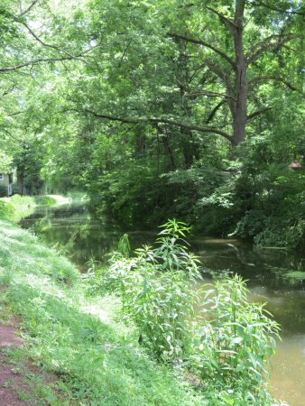 Upper Black Eddy, PA: Canal path