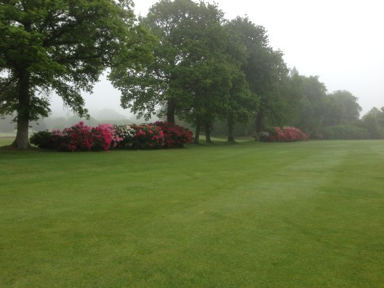 Le Tronchet, France: Zeer mooie fairways omzoomd met struiken rododendrons. Eind mei is de mooie bloeitijd!