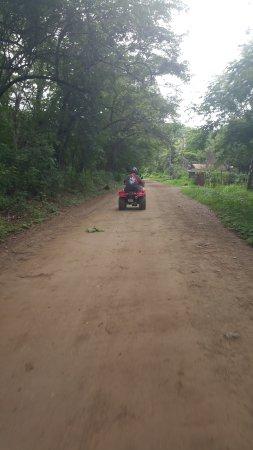 Artola, Costa Rica: We loved traveling thru the jungle area too!