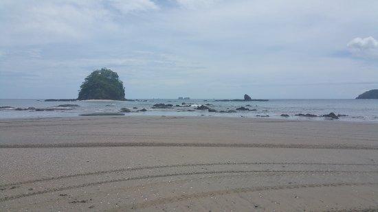Artola, Costa Rica: Riding the atv's on the beach was fun too!