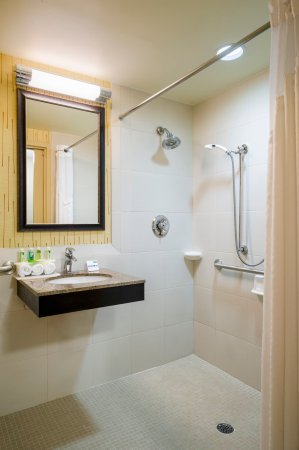 Frazer, PA: ADA Bathroom with Roll-in Shower